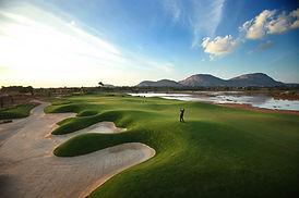 Prestige Golfshire Designer 6.jpg