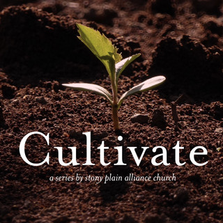 Cultivate Songs.jpg