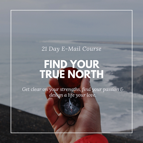 E-Mail Course: Find your True North