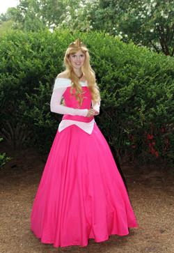 Princess Aurora Party Atlanta GA
