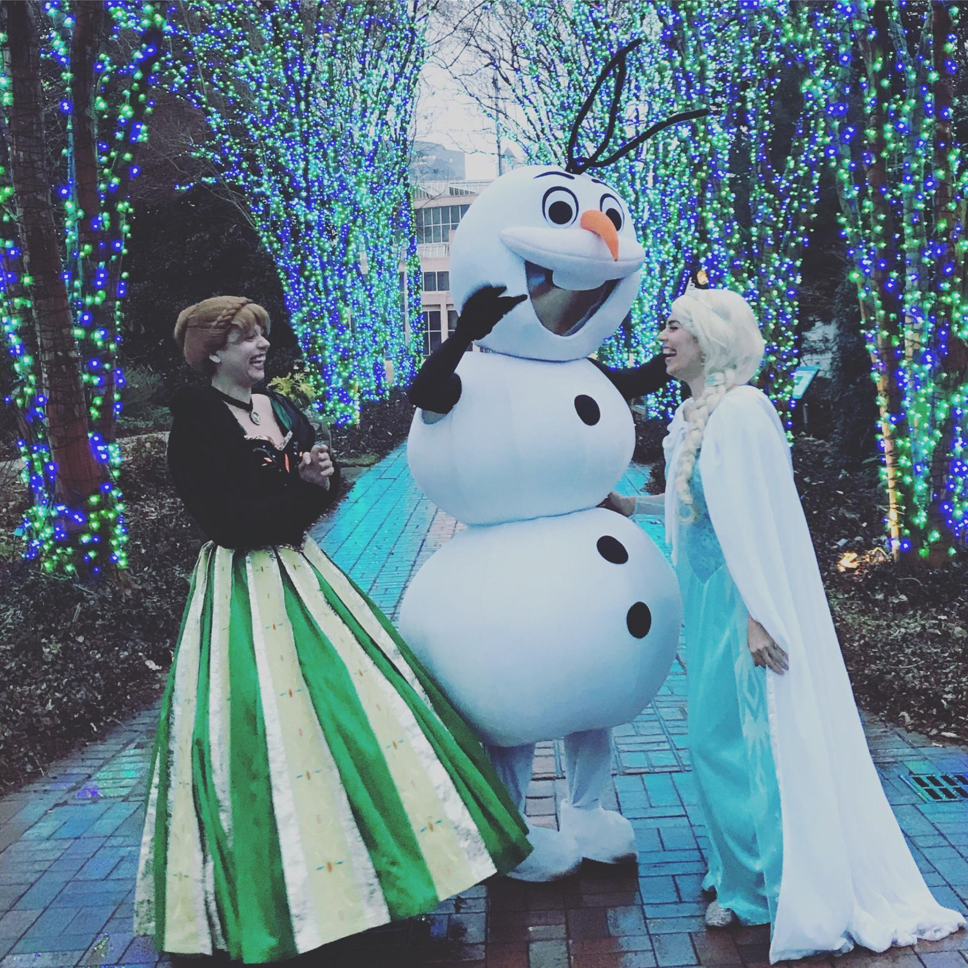Frozen Birthday Party Atlanta