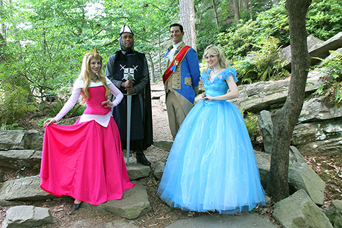 Knight and Cinderella Party Atlanta