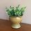 Thumbnail: Vaseformet Potte