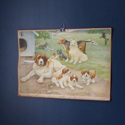 Vintage Hundeplansje