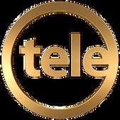 Teledoce Logo.png