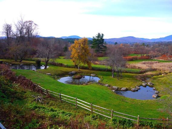Birdsong View