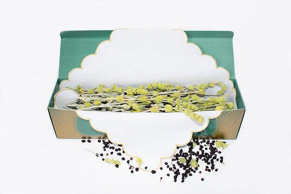 Festa - Mountain tea with wild blueberries