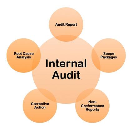 Internal Audits: Internal Auditing training, internal auditor certification, root cause analysis