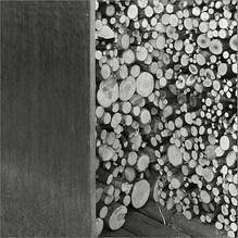 Holz vor der Hütt'n - III   ⸧ | ⸦   woodpile - III
