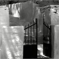 Im Schatten der Tamariske   ⸧ | ⸦   In the shade of the tamarisk