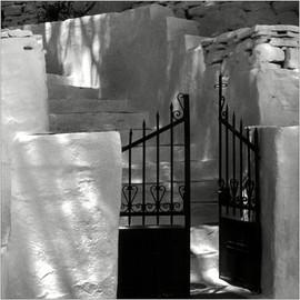 Im Schatten der Tamariske   ⸧   ⸦   In the shade of the tamarisk