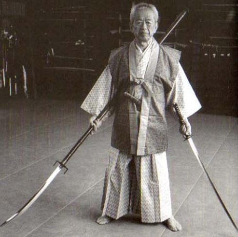 Hatsumi Bujinkan Perpignan Catalan ninjutsu arts martiaux .jpg