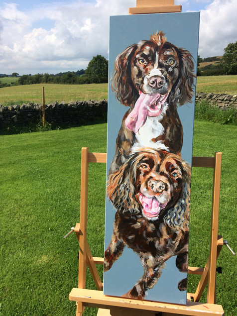 'The Smiley Dogs'