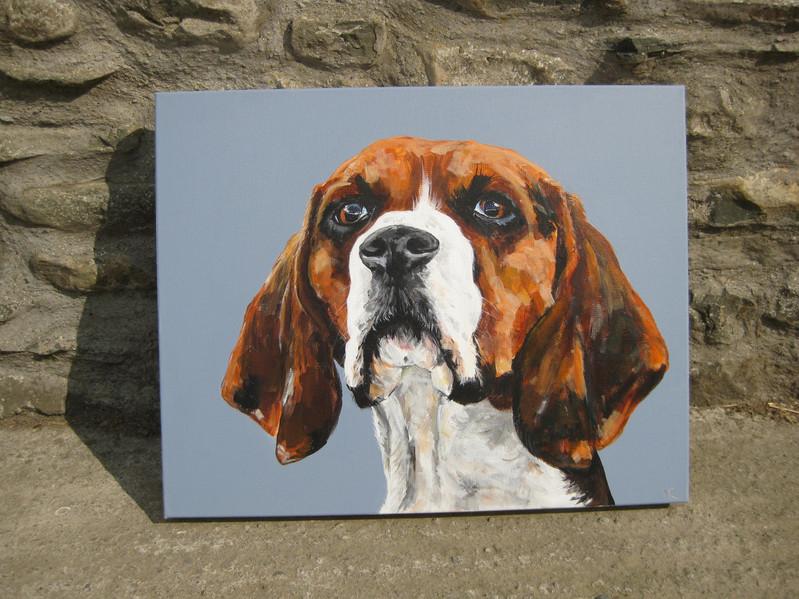 'Beagle'