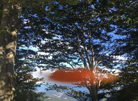 Melogno d'autunno