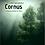 Thumbnail: Cornus - A Fantasy Ballade for Piano