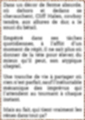 synopsis A L'Ouest.jpg