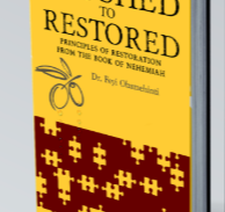 RYWN Podcast Episode 24: Exclusive Interview with Dr. Feyi Obamehinti, Author of Crushed to Restored