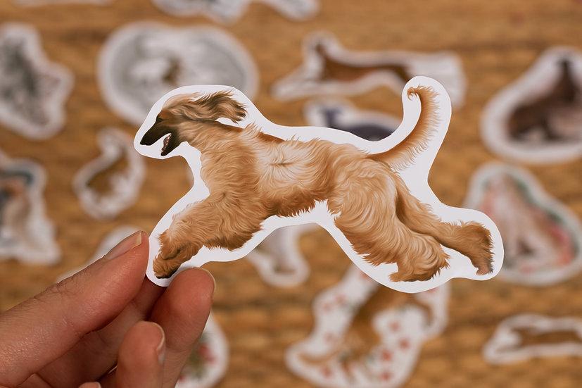 Afghan hound brown Sticker