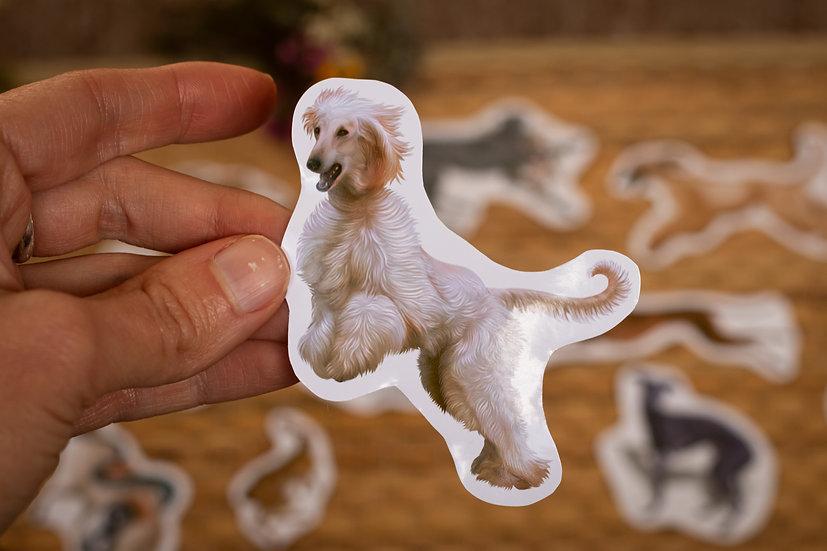 Afghan hound cream Sticker