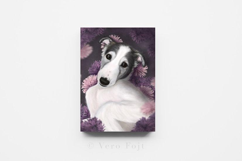 Borzoi soft puppy