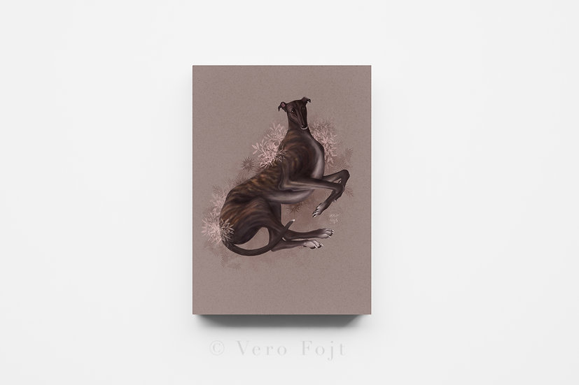 Greyhound brindle
