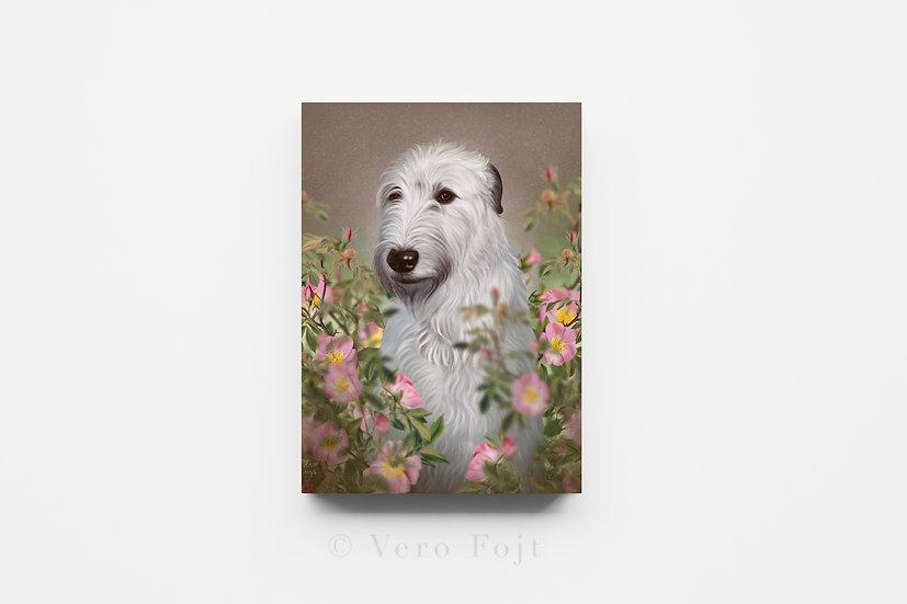 Irish Wolfhound and wild roses