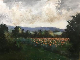 pumpkin field mountains painting