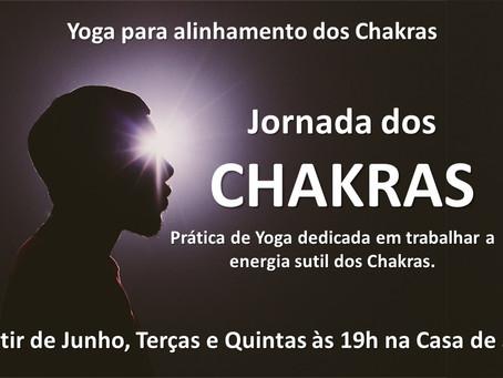 Sobre as Aulas de YOGA com Vivência e Estudo dos Chakras
