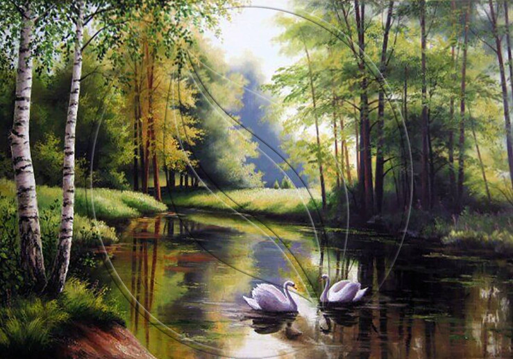 Natural landscape with swans