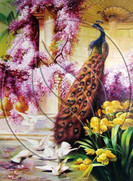"""Artwork """" Peacock and pigeons in the garden """" ( stretched convas, oil )"""