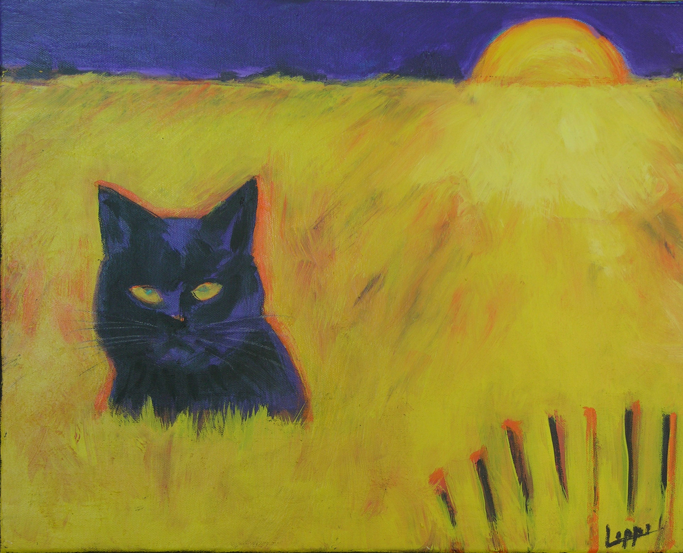 Cat in Field of Yellow / GIFTED
