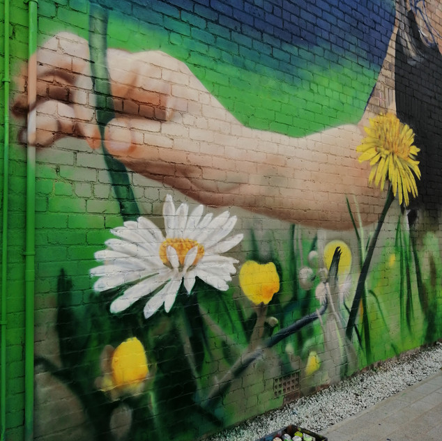 """""""Lucie"""" Mural / Cowdenbeath High Street / Painted with Kerry Wilson for Fife Council"""
