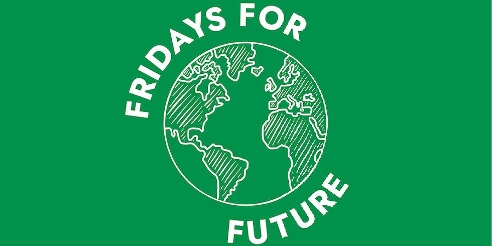 Manifestazione Friday For Future