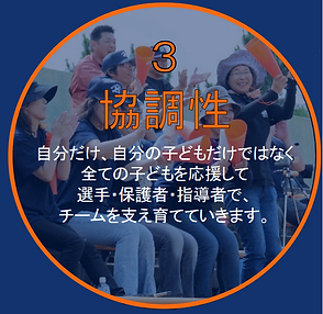 3(3).png