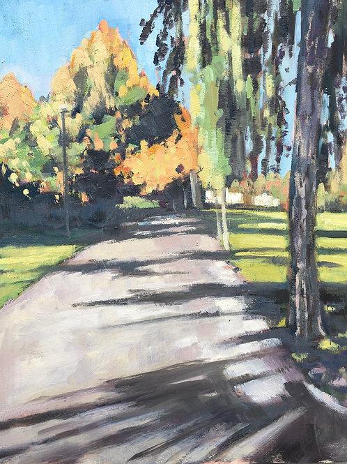 Path to the Skylark, Wandsworth Common