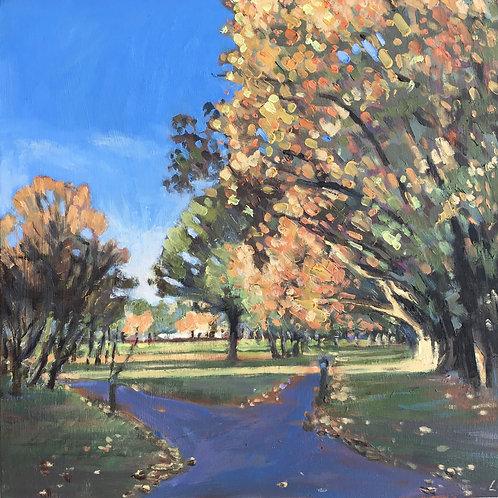 Wandsworth Common autumn colours