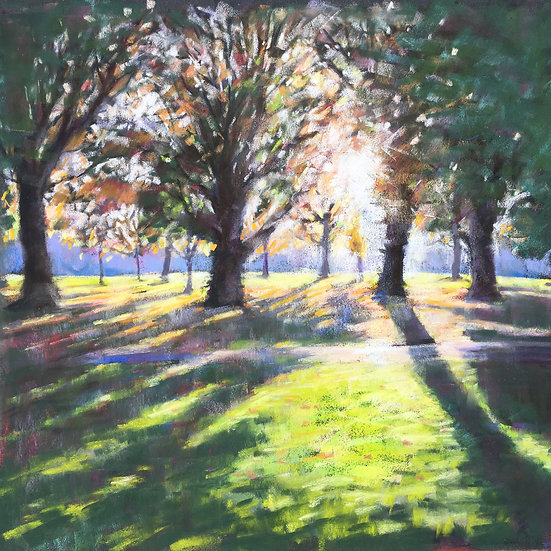Low sun through the trees, Wandsworth Common