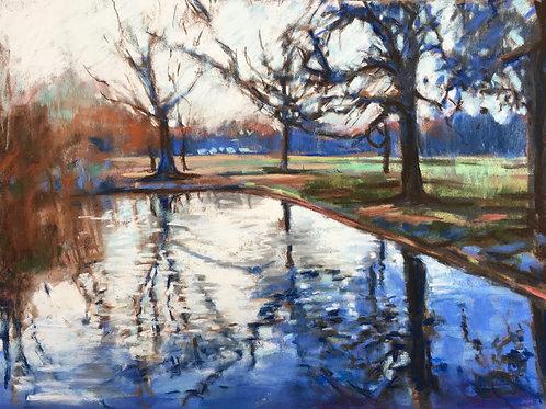 Winter pond, Wandsworth Common