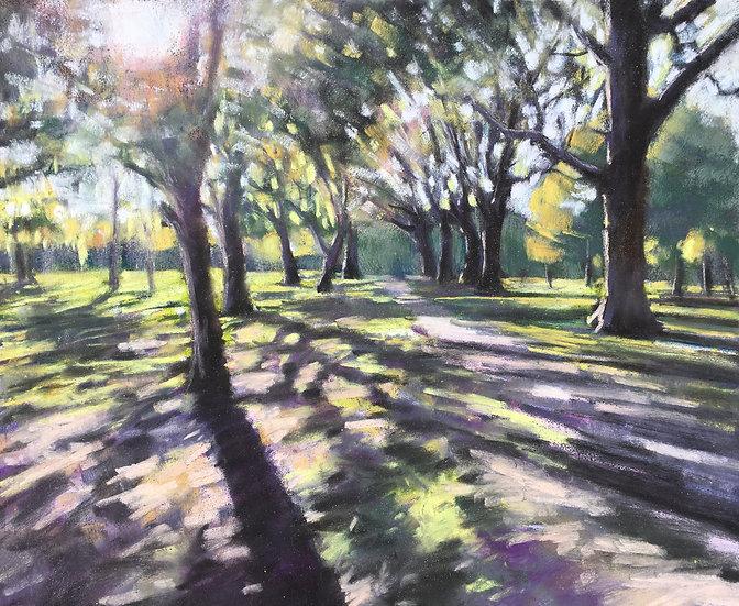Autumn path, Wandsworth Common