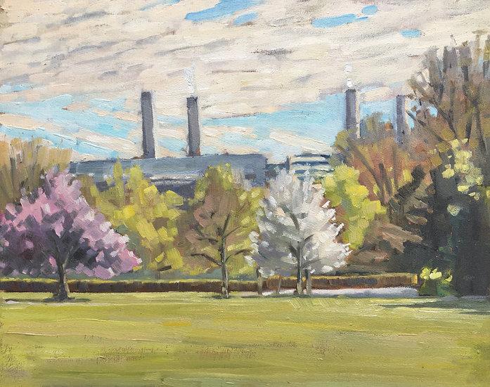 Battersea Power Station from Battersea Park II