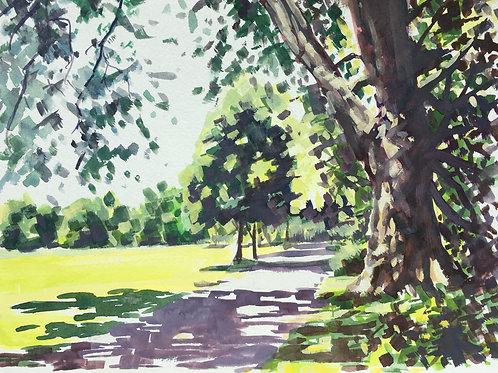 Path through Wandsworth Common