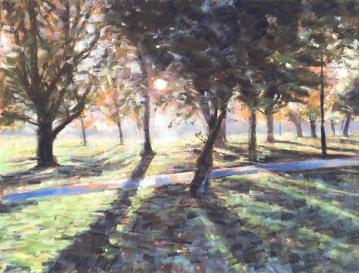 Wandsworth Common paths - autumn trees