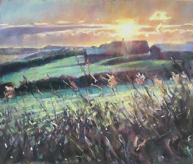 Frosty Cornish fields