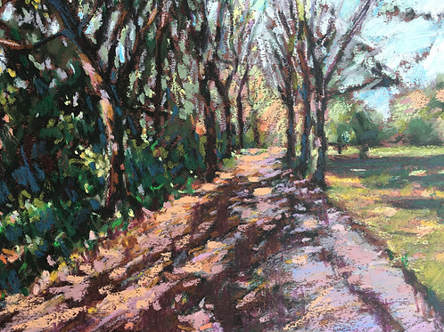 Autumn path II, Wandsworth Common