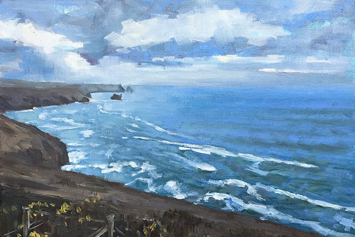 View from the coastal path, Cornwall