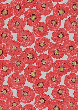Poppies - 554.1