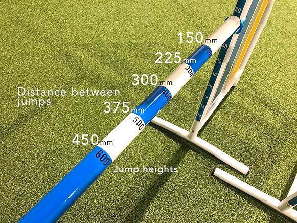 double jump bar.jpg