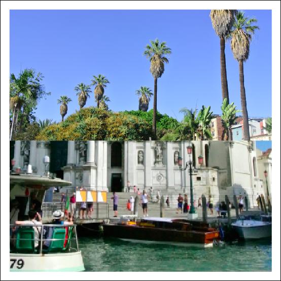 Boats & Palm Trees