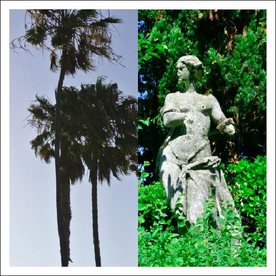 Sculpture & Palm Trees